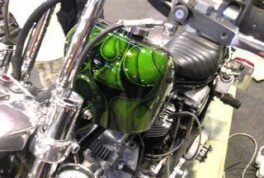 H-D 81FXEF [Green Graphics] thumbnail image