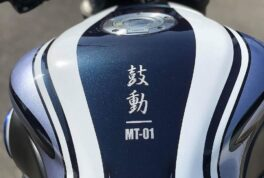 YAMAHA MT-01 [Beating]