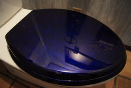 TOILET-SEAT [WrapPaint Blue] thumbnail image